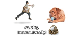 International ShippingBanner
